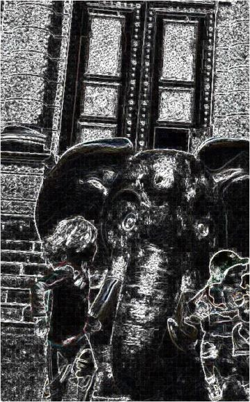 elefant_sw2.JPG