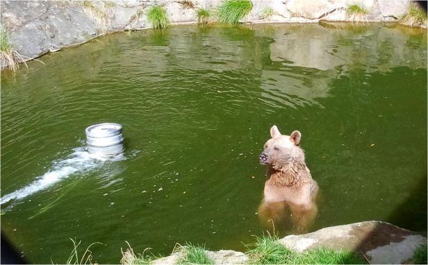 baerimwasser